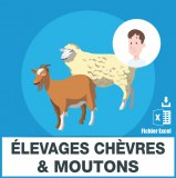 Emails elevage moutons et chevres