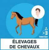 Adresses emails elevage de chevaux